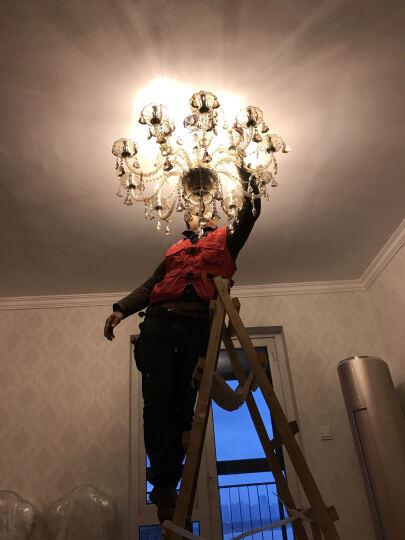 佐慕 欧式吊灯豪华蜡烛水晶灯客厅灯卧室灯餐厅吊灯具灯饰8210 奥地利水晶-8头-干邑色-吸顶 晒单图