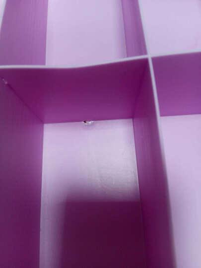 双飞蝶 收纳箱 内衣收纳盒塑料抽屉内裤袜子内衣盒整理盒可水洗三件套收纳用品 有盖 紫色三件套三盖 晒单图