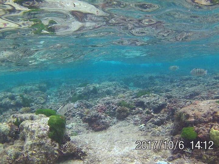 史历克运动相机4K潜水下高清摄像机8G内存版防水30米航拍行车记录仪2英寸大屏 黑色+8G高速存储卡 晒单图