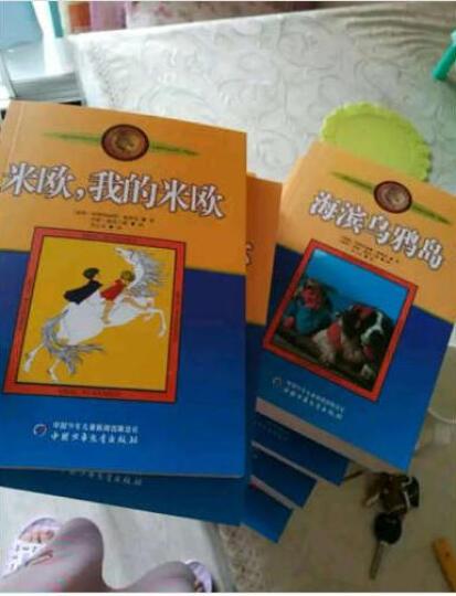Pippi Longstocking (Puffin Modern Classics) 长袜子皮皮 英文原版 晒单图