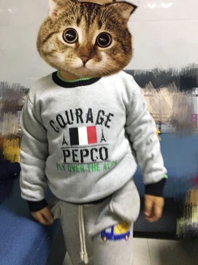小猪班纳(PEPCO)儿童毛衣 男童休闲套头毛衣中大童童装圆领长袖衫 115441235 宝蓝 150 晒单图