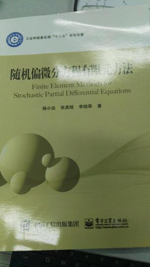 随机偏微分方程有限元方法 晒单图