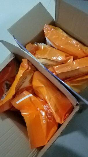 【3袋】无糖精食品健身苦荞荞麦麦片燕麦片500g/袋 糖尿饼病人食品中老年高血糖孕妇零食粗粮代餐饼干 燕麦麦片500gX4袋 晒单图