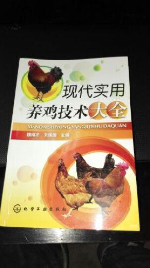 现代实用养鸡技术大全 晒单图