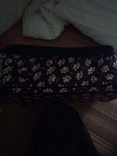 文宠  宠物包猫咪背包泰迪外出便携旅行包狗狗包包猫猫包猫笼袋子箱用品 L-大型适合  9-14斤(颜色随机发货) 晒单图
