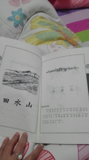民国教育书系·民国老课本:国文 晒单图