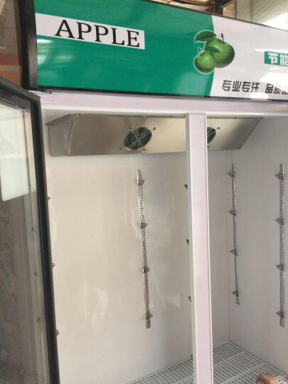 乐创(lecon)立式冰柜双门展示柜冷藏保鲜三门商用冰箱饮料超市冷柜水果厨房陈列柜凉菜点菜柜直冷风冷 双门绿白色 风冷款 晒单图