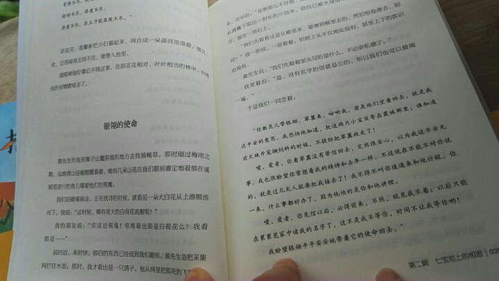 小桔灯/中小学生必读丛书-教育部推荐新课标同步课外阅读 晒单图