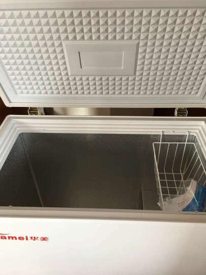 华美(Huamei) 203升小型冰柜家用单温小冷柜卧式冷藏冷冻柜BC/BD-203 晒单图