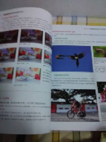 Nikon D3300数码单反摄影技巧大全 晒单图
