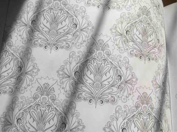 梦幻涂色系列:密林幻兽 晒单图