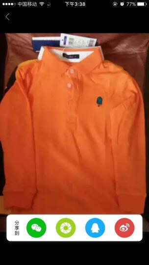 麦科贝尔童装男童T恤长袖中大童男装春装翻领POLO衫儿童休闲纯棉上衣潮 白色(纯色) 130 晒单图