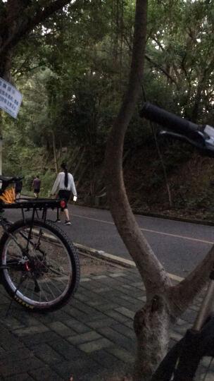 赛领CYLION 公路自行车链条油山地车润滑油单车养护油防尘防锈 60ml盒装 晒单图