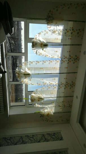 翁氏布艺 田园风格雏菊气球帘提拉帘刺绣成品窗纱罗马窗帘卧室阳台餐厅飘窗帘 雏菊布-粘贴款式 宽0.8米*高2.0米一片 晒单图