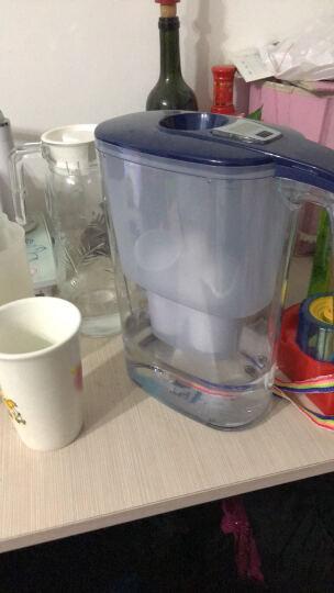 倍世(BWT) 镁离子净水壶滤芯 3只装 德国技术原装进口 过滤净水器 家用滤水壶 净水杯  晒单图