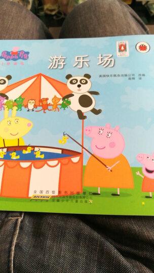 游乐场-小猪佩奇  晒单图