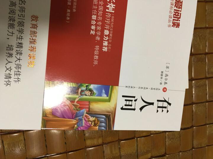 童年+在人间+我的大学(套装共3册)/高尔基经典三部曲 教育部推荐新课标必读名著 无障碍阅读插图版 晒单图
