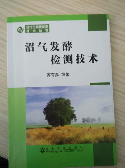 沼气发酵检测技术:现代生物质能源技术丛书 晒单图