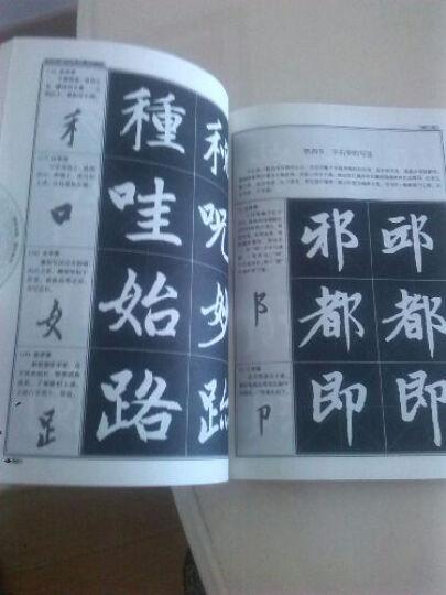 赵孟頫楷书教程:胆巴碑中国书法培训教程 晒单图