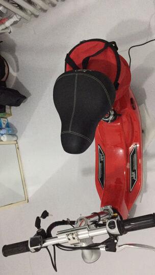 十尚珍品冰岚系列(Binglan) 电动车 小海豚电动滑板车 迷你折叠车女士自行车代步车电瓶车锂电池 热情红 【特价款】有刷同步带蓄电池重23KG不送赠品 晒单图