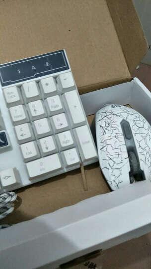 前行者游戏背光发光牧马人机械手感键盘鼠标套装lol键鼠家用有线办公网吧外设电脑笔记本USB外接键盘 GX50黑色橙黄背光单键盘 晒单图