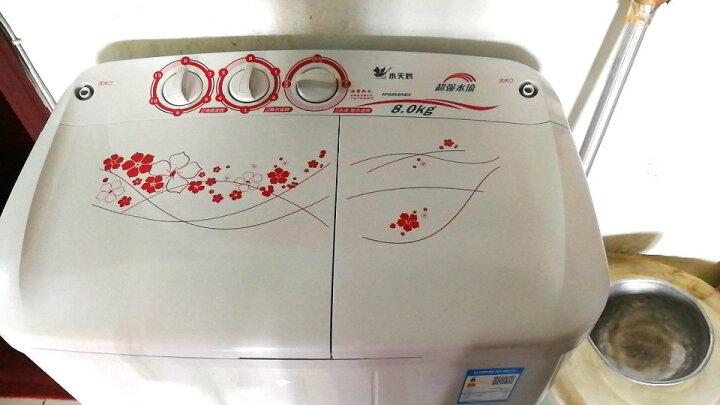 小天鹅(LittleSwan)双缸双桶洗衣机半自动  强力电机  三年包修  8公斤 TP80-DS905 晒单图