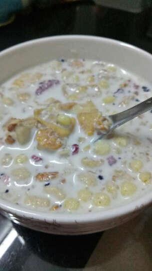 西麦 烘焙冷冲水果什锦谷物燕麦片500g 即食谷物早餐 非油炸非膨化 拌酸奶美美哒 晒单图