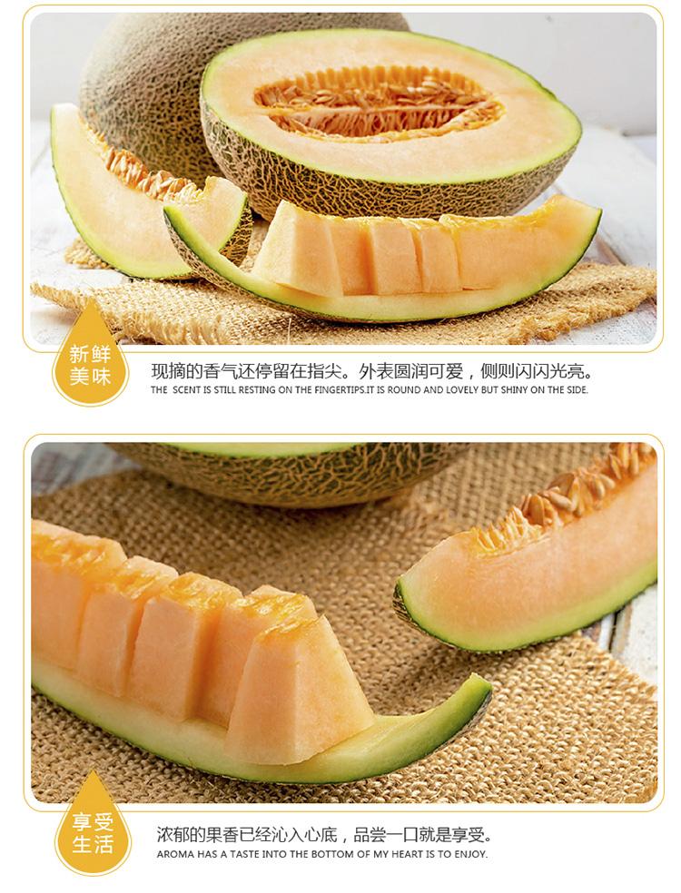 新疆西州蜜哈密瓜 1粒装 单果1.5kg以上 新鲜水果