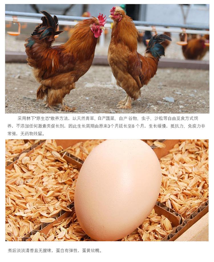 沱沱工社 北京油鸡 林下散养柴鸡蛋 30枚/盒-京东