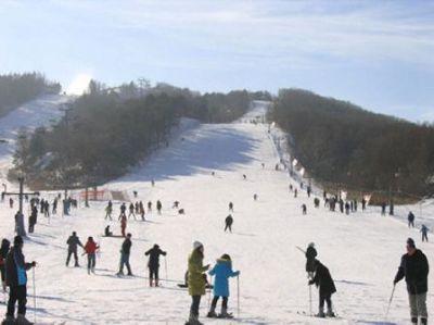 东北亚滑雪场门票一张