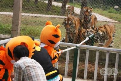 0武汉动物园年票_2015年武汉动物园年票攻略婴幼育儿得意生