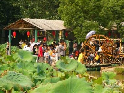 0武汉动物园年票_