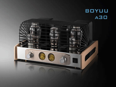 REISONG Boyuu A30 2A3C hifi tube amp single-ended class A audiophile integrated amplifier