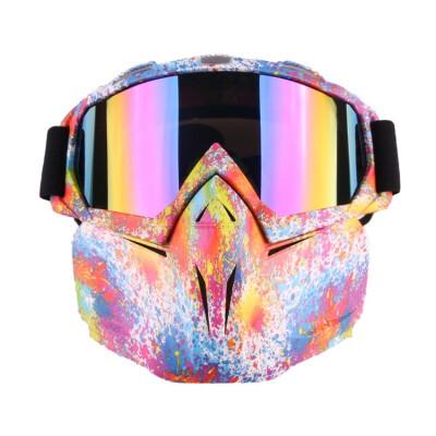 Ski Goggles Face Mask Women Men PC Lens TPU Frame Plain Glass Windproof Eyewear Outdoor Sports Glasses