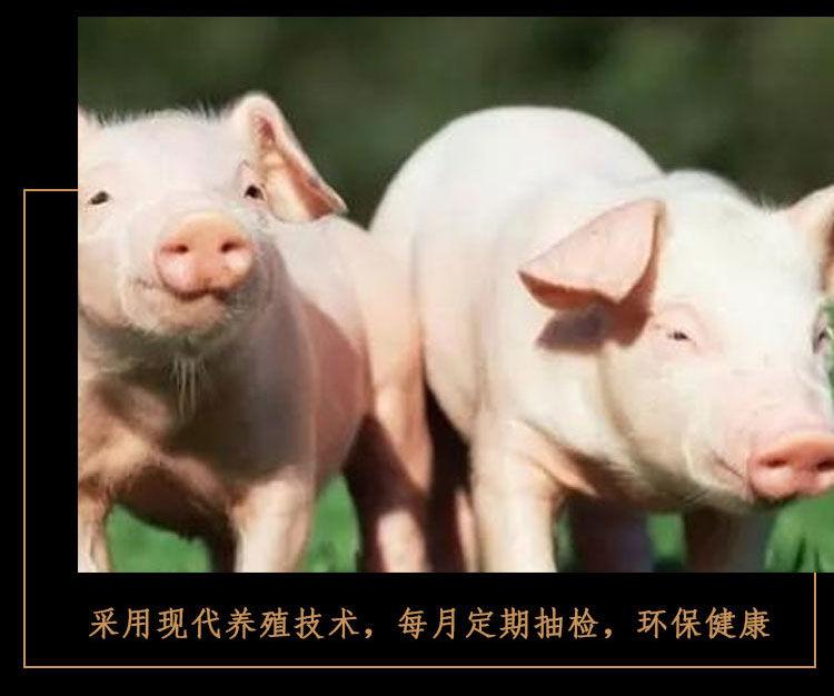 湖南特产腊肉 烟熏柴火农家腊味偏肥五花腊肉 偏瘦红前腿腊肉2斤装