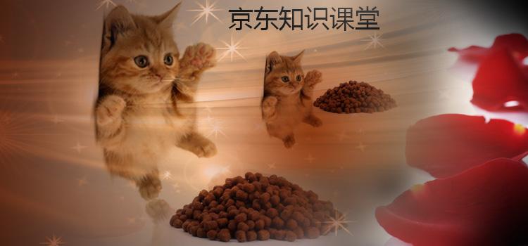 猫粮品牌_猫粮十大品牌 - 京东