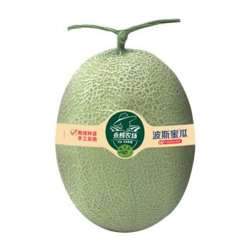 S永辉农场波斯蜜瓜 3-5斤/个