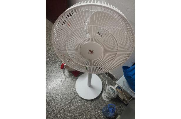 布谷(BUGU)美的集团电风扇怎么样,质量好吗,真相大揭秘
