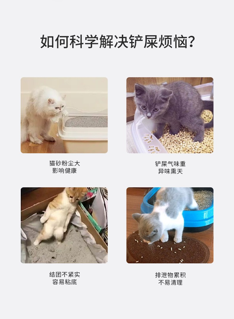 小壹混合猫砂豆腐猫砂除臭活性炭吸水结团低尘可冲厕所猫沙膨润土猫砂 混合猫砂一包(3KG)