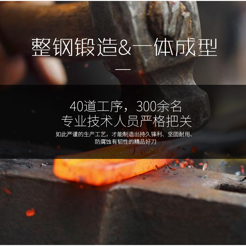 德国进口主厨刀 索林根制造 欧瑞克斯不锈钢一体手工锻造厨房切菜刀厨师刀