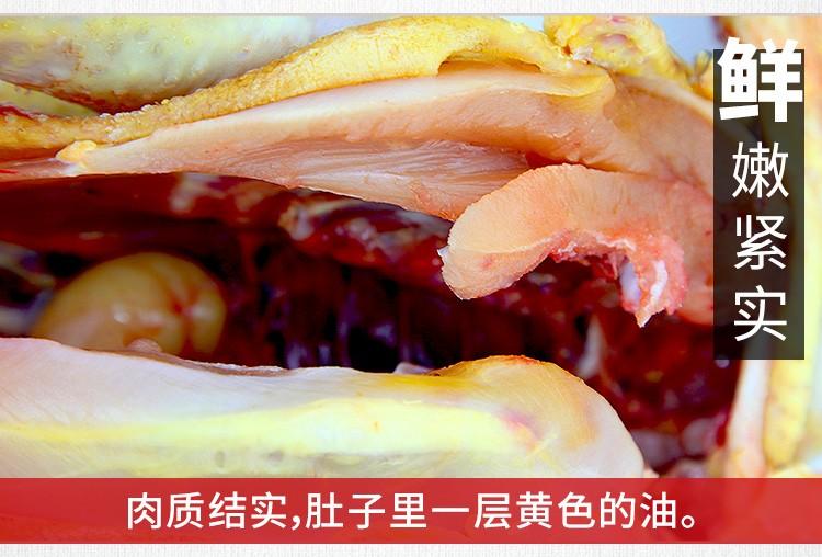 对面小城 土鸡老母鸡肉农家散养2年柴鸡笨鸡炖汤 整鸡 新鲜鸡肉 生鲜 约1.1kg/只