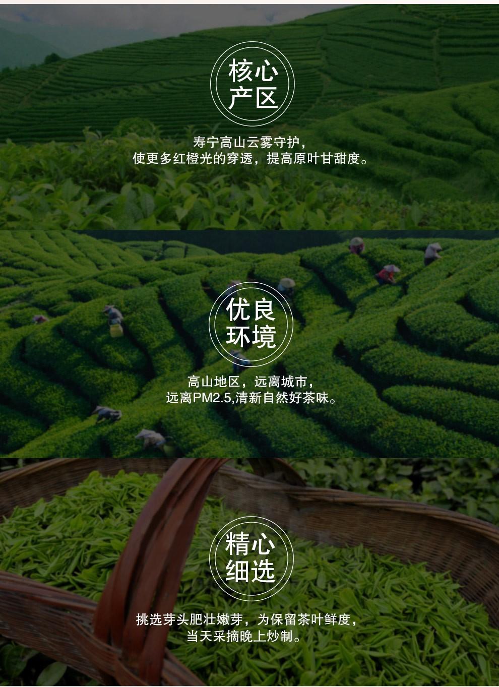 【宁德馆】梦龙韵 绿茶 高山云雾绿茶 明前春茶茶叶 2020年新茶 4罐500克