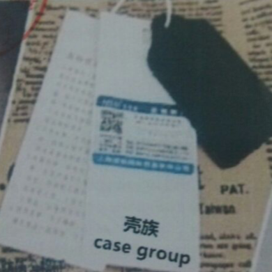 壳族(case group)