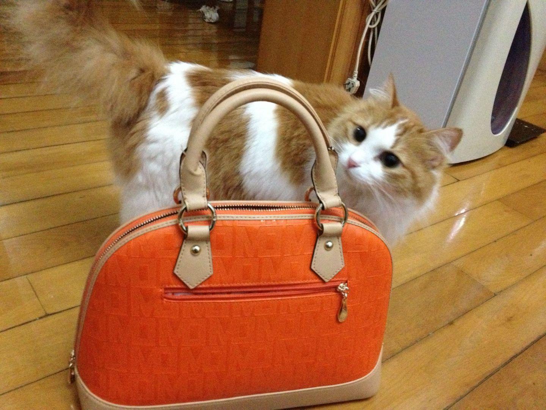 designer hand bags 00258424 discount