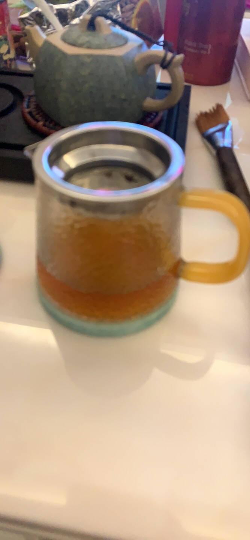 忆壶茶玻璃公道杯带过滤网茶漏套装带把茶具配件不锈钢茶漏茶海分茶器加厚耐热功夫玻璃茶杯子大号公道杯+茶漏350ml