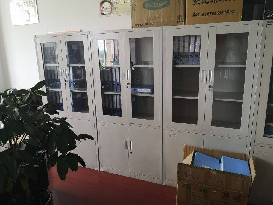 豫基恩文件柜铁皮柜档案柜办公柜资料柜书柜抽屉柜玻璃柜五节柜凭证柜储物柜带锁大器械文件柜经济款