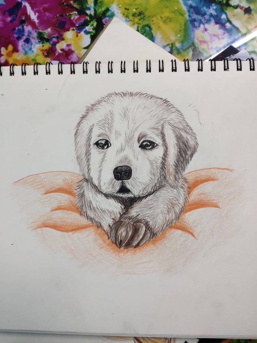 得力(deli)24色可擦彩铅环保无木儿童画画彩色铅笔绘画兴趣初学幼儿填色画笔带橡皮头7072-24