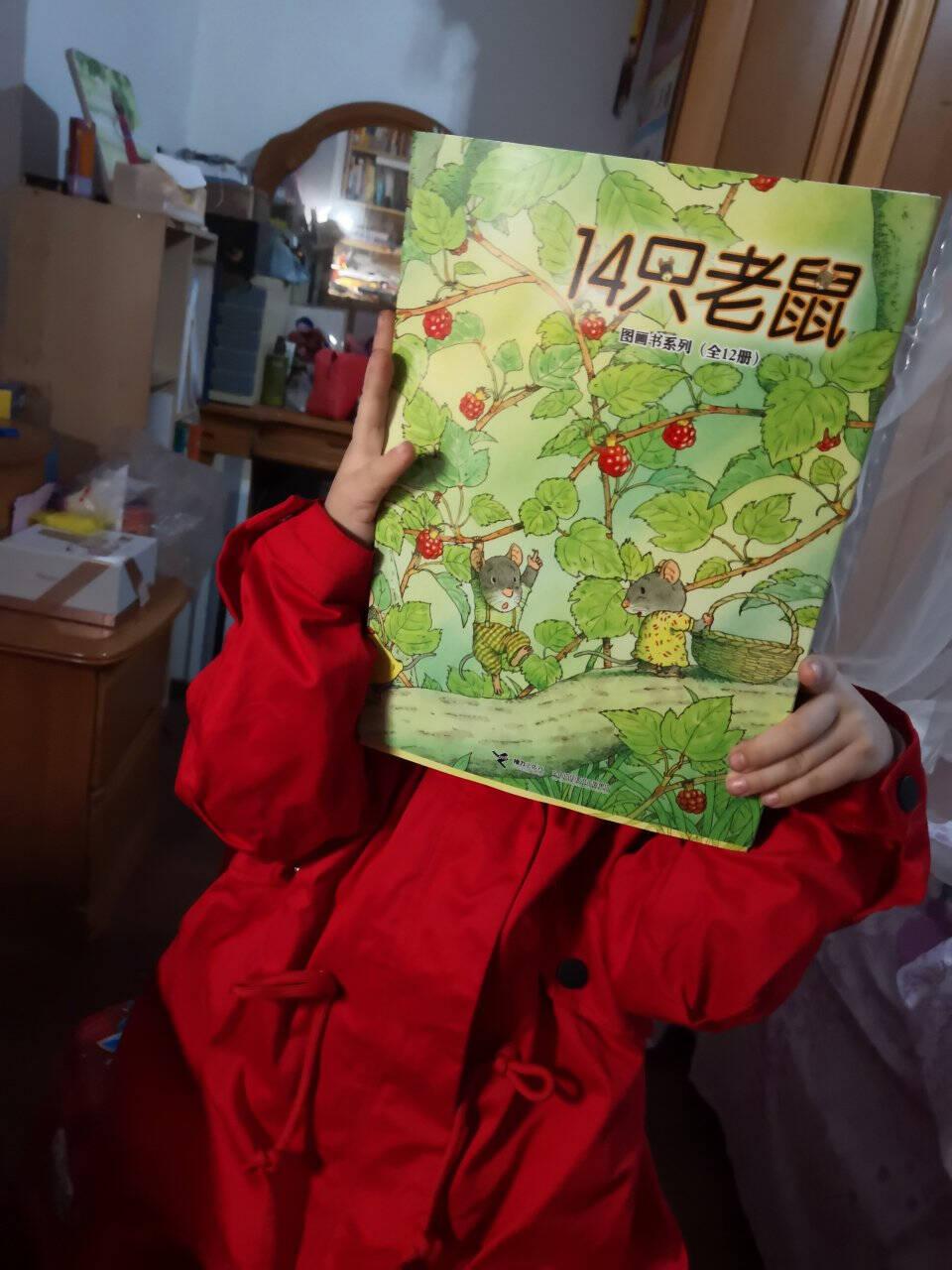 【樊登推荐】14只老鼠图画书系列(全12册)