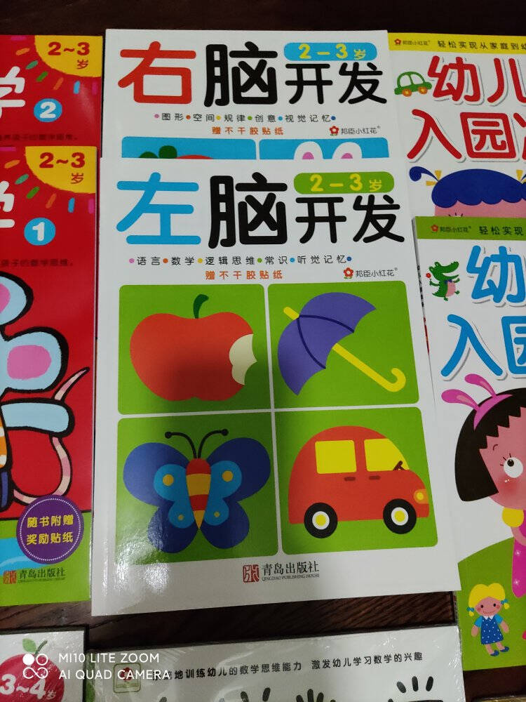 头脑潜能开发3-4岁:迷宫(套装共2册)(邦臣小红花出品)