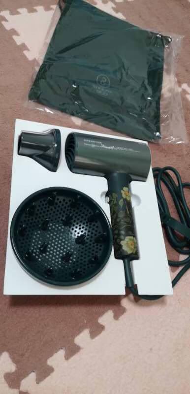 素士小米生态企业电吹风家用吹风机负离子大功率速干冷热风恒温护发吹风筒IP礼盒款H5梵高绿升级版